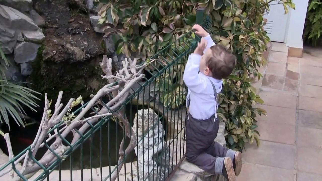 Benalup casas viejas celebraci n bautizo de fran en el for Youtube jardin prohibido