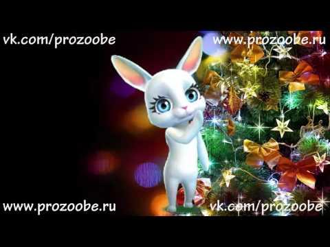Подруга, С Новым Годом! Красивое поздравление с новым годом от ZOOBE Зайки Домашней Хозяйки - Видео на ютубе