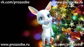 Подруга, С Новым Годом! Красивое поздравление с новым годом от ZOOBE Зайки Домашней Хозяйки