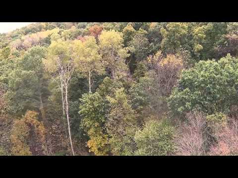 Dji fall colors in Ohio GoPro
