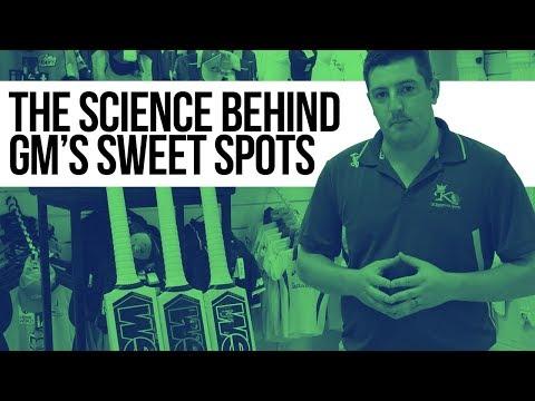The Science Behind Gunn & Moore's Cricket Bat Sweet Spots