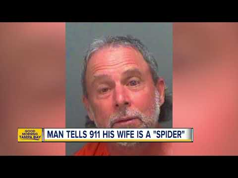 Deputies: Florida man drunkenly called 911 to report his wife is a 'black widow spider'