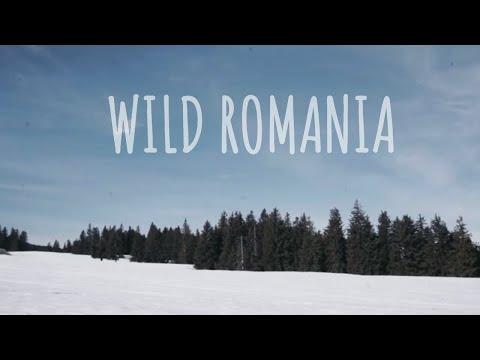 5 DAYS In Romania's Carpathian Mountains | Trailer