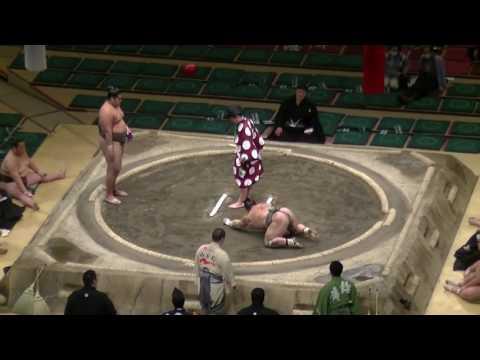 Брутальный глубокий нокаут в сумо / Zertifizierte Handelsvertreter in Deutschland www.z-trans.org - видео онлайн