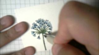 Stampin' Up! Tutorial : Layered Marker Technique