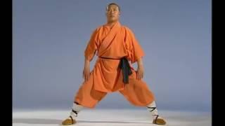 Shaolin 8 Part Qi Kung Ba Duan Jin From YouTube
