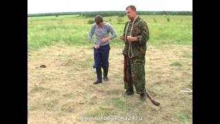 Связывание пленного веревкой ч.2