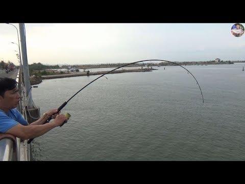 Câu ngay ổ cá hồng dính liên tục trên cầu Tô Châu | Go fishing in vietnam