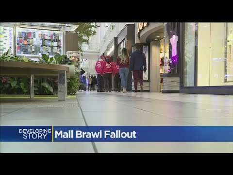 Security Beefed Up At Arden Fair Mall In Case Of Another Brawl