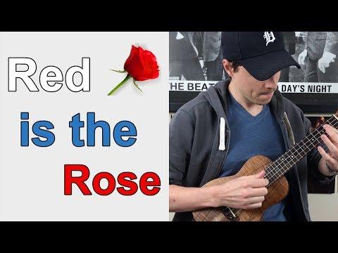 Learn an Irish Ballad on Ukulele || Red is the Rose - Ukulele Lesson