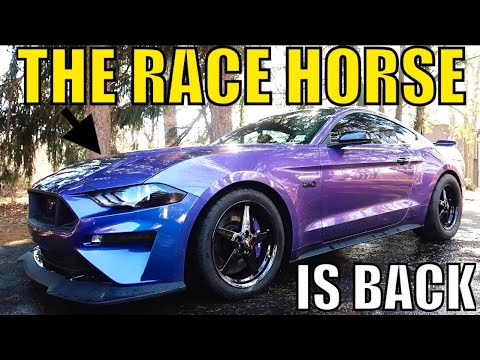 HOW TO RACE PREP YOUR - Ford Mustang GT!
