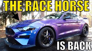 HOW TO RACE PREP YOUR 2018-2019 Ford Mustang GT!