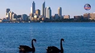 Đi nước ngoài định cư ở Úc hay Mỹ để có cuộc sống tốt đẹp hơn?