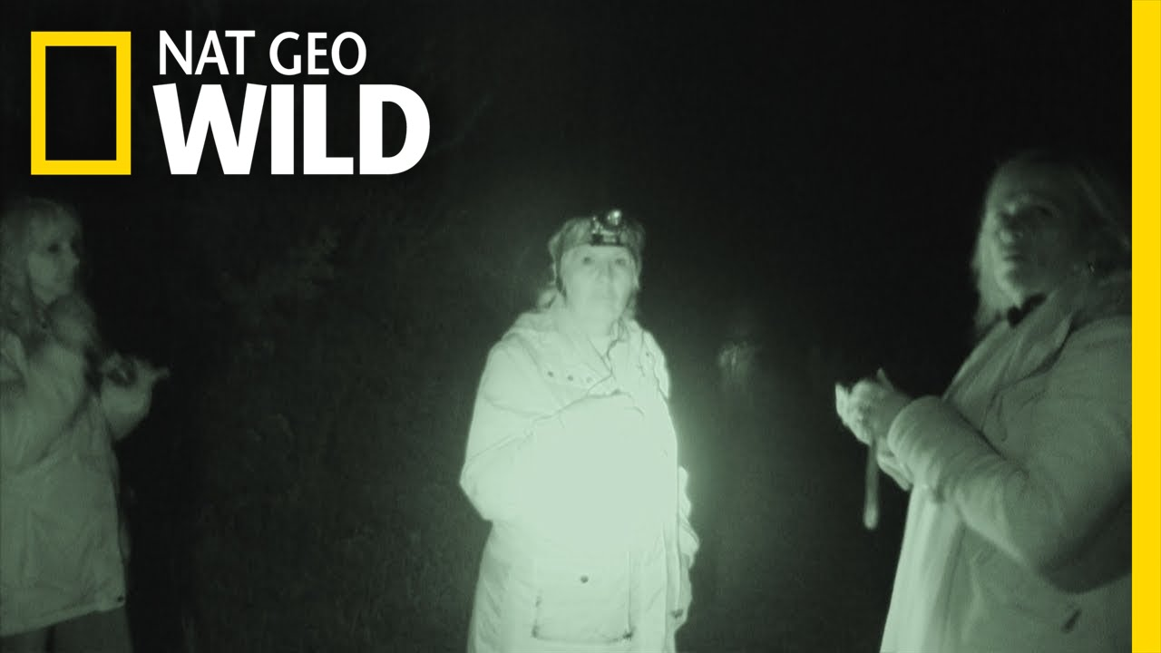 Ghost Hunters | Wild Scene Investigation