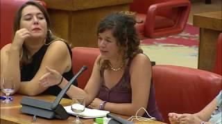 Sofía Castañón en la Comisión de evaluación en materia de Violencia de Género
