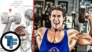 Sadik Hadzovic - Shoulders Workout / Entrenamiento de Hombros |Todofitness