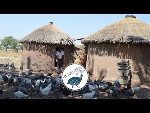 ESF Les 1000 Perles du Togo   Pourquoi ce projet