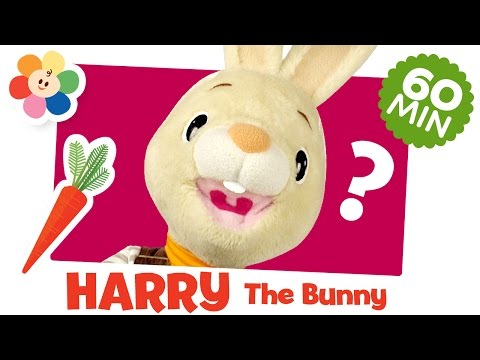 What is it? Compilation | Harry the Bunny | Learn First Words | Kids Learning Videos | BabyFirst