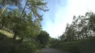 【車載動画8倍速ドライブ】山梨県道201号~上日川ダム~山梨県道218号