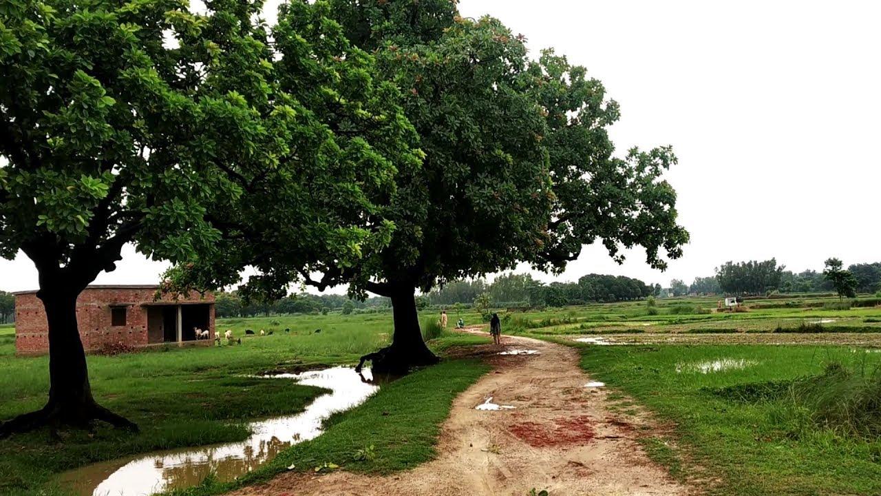 Most beautiful Punjab village road tourPart3||Rural life|Rural area in  Punjab India Pakistan - YouTube