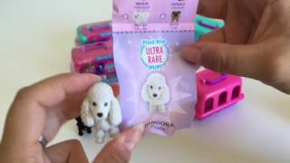 Puppy In My Pocket Puppy Carriers Opening | kittentsumsntoys