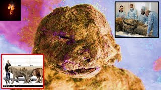 Scientists To Clone Prehistoric Giant Cave Lion? thumbnail