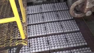 видео производство тары
