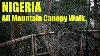 Nigeria - Afi Mountain Canopy Walk
