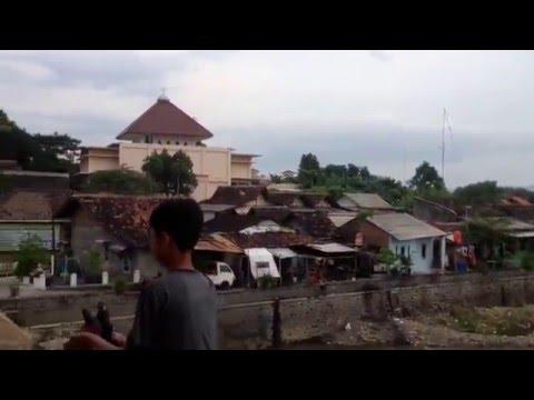 Melatih Merpati kolongan | Burung Dara Kolongan