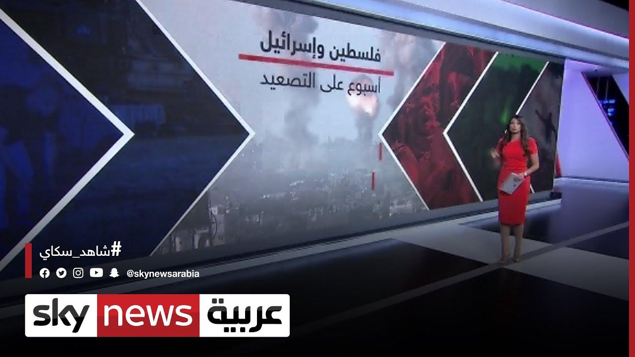 ct فلسطين وإسرائيل.. أسبوع من الخسائر  - نشر قبل 37 دقيقة