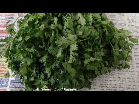 How to clean and store Cilantro/Coriander Leaves-How to clean and store coriander leaves in Tamil