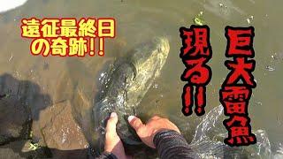 【北陸雷魚遠征】最終日に起こった奇跡。想像を絶する巨大雷魚に絶句。これがやたろう執念の呼吸打ちだ!snakehead fishing in Japan
