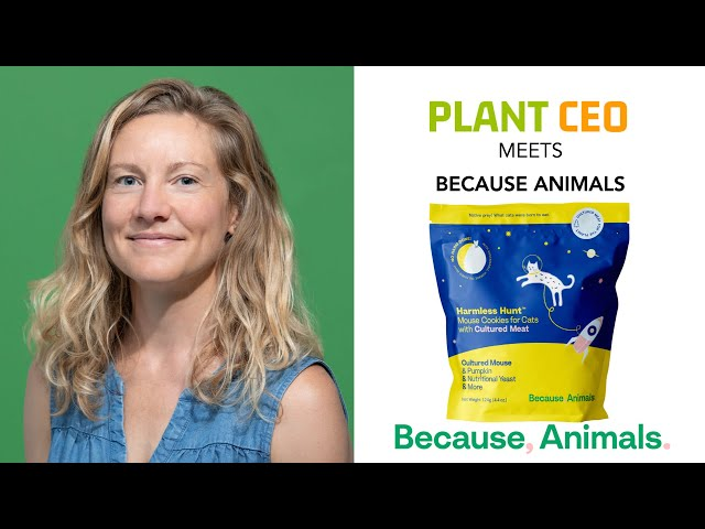 Cell-based Pet Food with Because Animals || PLANT CEO #68