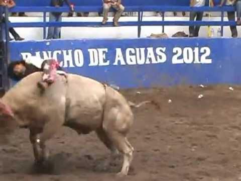 """Loquito / """"May Pay"""" de Nolo Bravo-Torneo Rancho de Aguas  08 Julio 2012"""