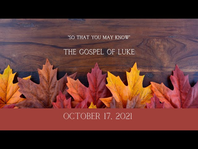 October 17th Live Stream