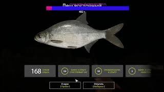 НА АХТУБЕ ИДЕТ ЛЕЩИК И САЗАН Русская Рыбалка 4