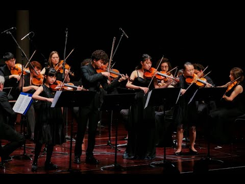 Chloe Chua – Vivaldi Concerto No. 10 for Four Violins, RV 580