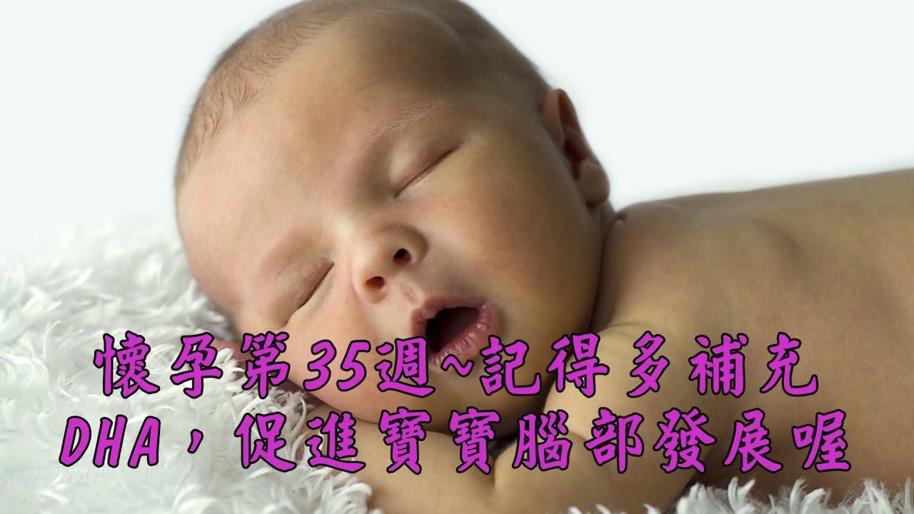 懷孕第35週~記得多補充DHA。促進胎寶寶腦部發展喔 【我懷孕了】 - YouTube