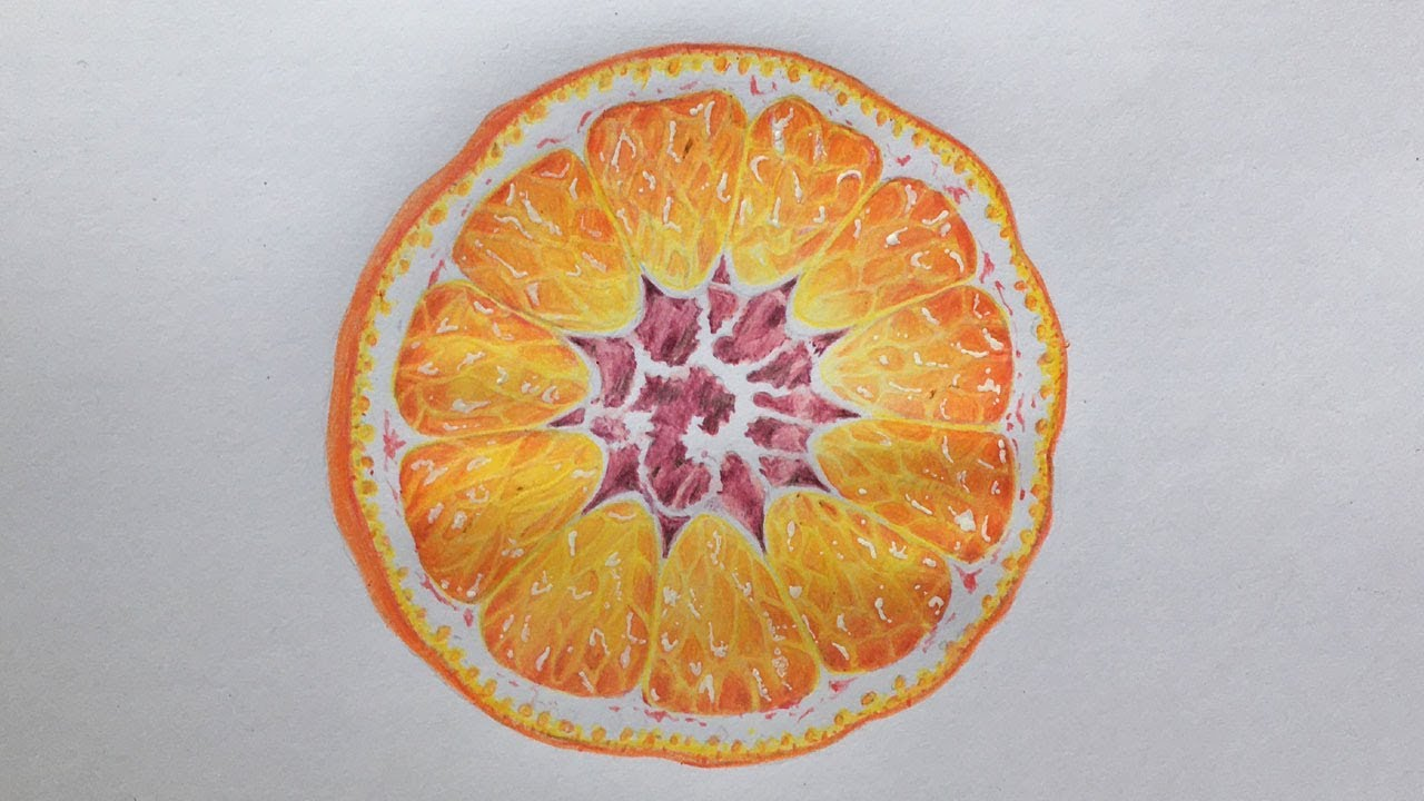 Orange Slice Drawing in Color Pencils   Orange Drawing ...