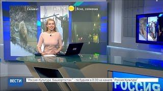 Вести-24. Башкортостан 19.04.17 22:00