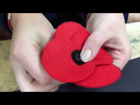 How to make your Poppies