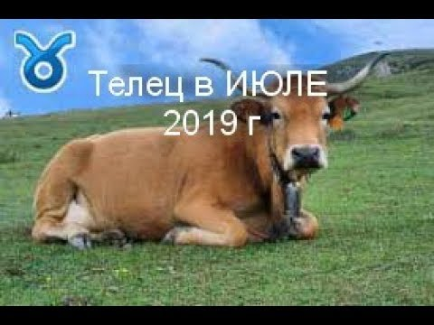 ТЕЛЕЦ на ИЮЛЬ 2019 г от J Dzay