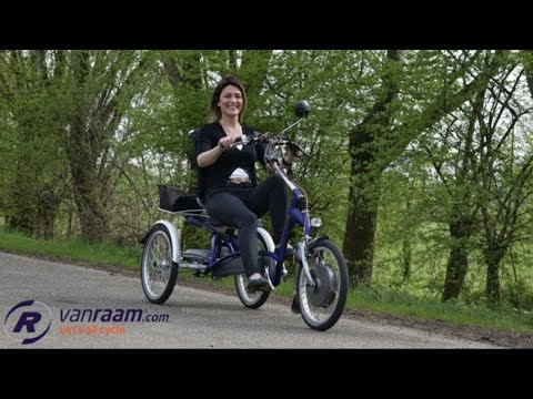 Easy Rider - Adult tricycle