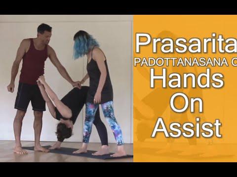prasarita padottanasana c  hands on assist  youtube