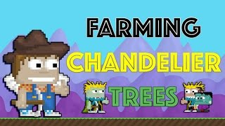 Growtopia | Farming 1000+ Chandelier Trees!