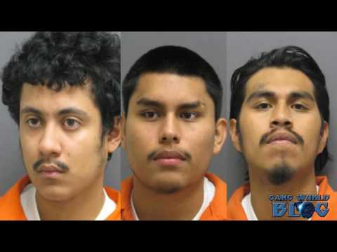 Four charged in gang related shooting in Manassas, Virginia