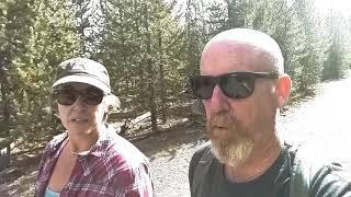 Why We Love Yellowstone!