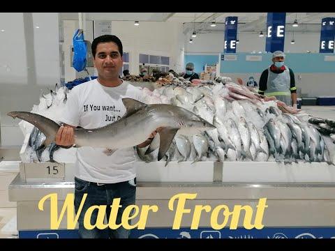 Water Front Dubai   Fish Market   Machli Bazar   Vlog