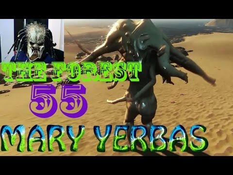 The Forest 0.08B Gameplay Español HD | La Torre Interminable | Cap 55