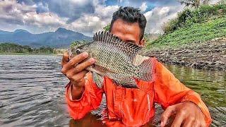 Video Memang Spot Ini Sarangnya Ikan Nila !! Lihat Hasilnya !! download MP3, 3GP, MP4, WEBM, AVI, FLV September 2018